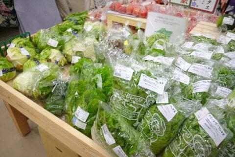 直売所の野菜の写真