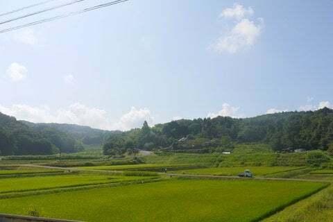 風見鶏の回りの風景の写真