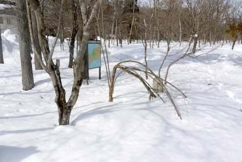ひるがの分水嶺公園の写真