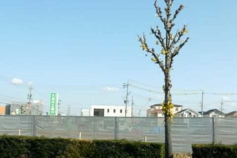 (仮称)平和堂春日井店予定地の写真