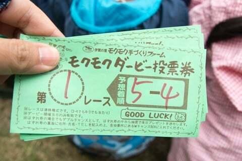 投票券の写真