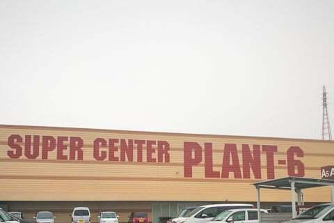 PLANT6の写真