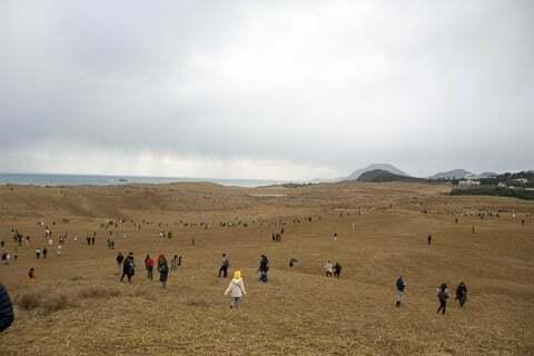 鳥取砂丘でゲームをするプレーヤーの写真