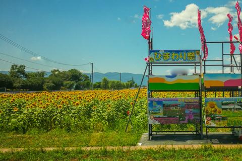 いちのえだ田園フラワーフェスタの写真