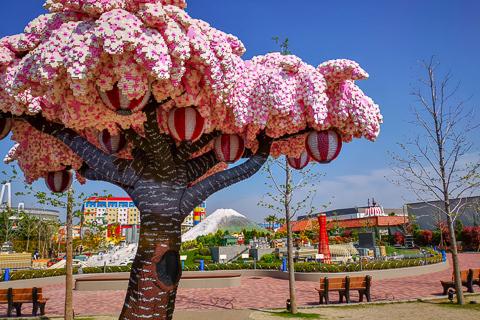 レゴランドと桜の木の写真