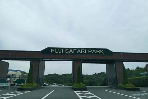 富士サファリパークの写真