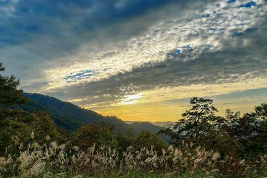 頂上からの景色の写真