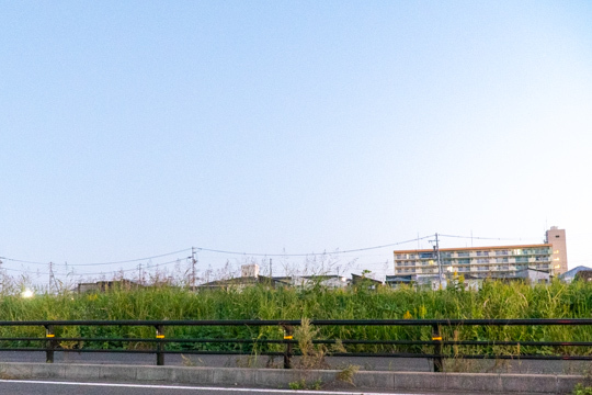 (仮称)トライアル港区秋葉店予定地の写真