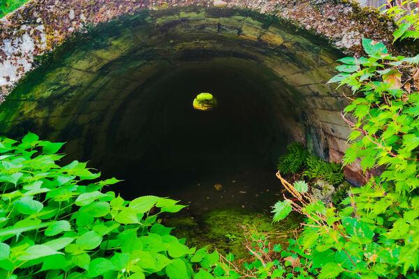 トンネル後の写真